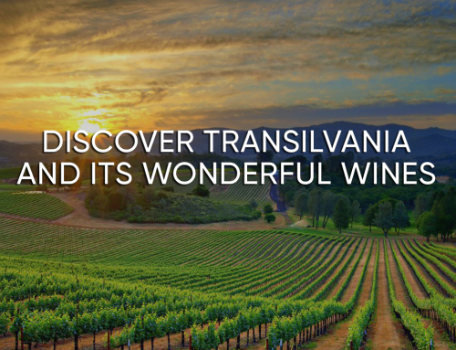 DISCOVER TRANSILVANIA AND ITS WONDERFUL WINES